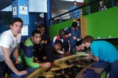 ao-2012-finals-at-aquarium-dsc07599