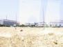 2008 IOI Egypt