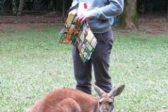 2013-ioi-janneman-and-kangaroo-img_0150