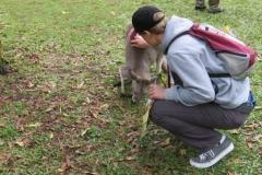 2013-ioi-janneman-pets-kangaroo-img_0145