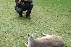 2013-ioi-robert-and-kangaroo-img_0154