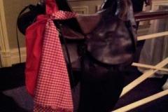 2012-sbitc-saddle